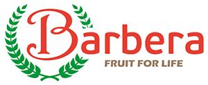 Andrea Barbera (Barbera International srl) - logo